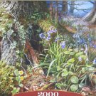 Castorland From Rusland Woods 2000 pc Jigsaw Puzzle Forest