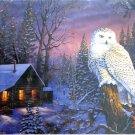 SunsOut Terry Doughty Night Watch 1000 pc Jigsaw Puzzle Log Cabin Winter Snowy Owl