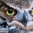 SunsOut Carla Curt Dark Owl 1000 pc Jigsaw Puzzle Raptor