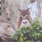 Cobble Hill Great Horned Owl 1000 pc Jigsaw Puzzle Owlet Forest Woods