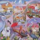 Cobble Hill Rosiland Solomon Waterbird Magic 1000 pc Jigsaw Puzzle Egret Heron Flamingo Pelican