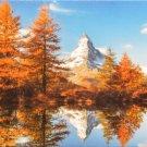 Educa Matterhorn Mountain in Autumn 1000 pc Jigsaw Puzzle Trees Landscape Lake