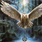 Educa Awake Your Magic 500 pc Jigsaw Puzzle Owl Amulet Fantasy
