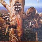 SunsOut Jay Kemp Balancing Act 300 pc Jigsaw Puzzle Animals Raccoons