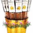 Mayan Temple Blend Escential Essences Stick Incense