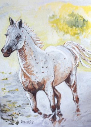 Speckled Horse Running Blank Greeting Card