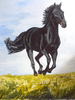 Black Stallion's Morning Run