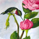 Rubfy Throated Hummingbird and Roses