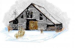 Gray Barn In Snow