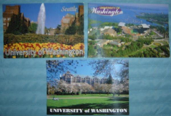Vintage University of Washington Photo Postcard Lot (3 Postcards)