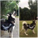 Pets Dog Saddle Bag Pet Backpack Cap Carrier Outdoor Hiking Camping Bags Stylish