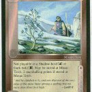 Middle Earth Sapling Of The White Tree Uncommon Wizards BB Game Card