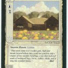 Middle Earth Beorn's House Wizards BB Fixed Game Card
