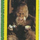 Harry And The Hendersons #2 Puzzle Sticker Chase Card