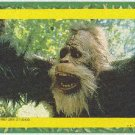 Harry And The Hendersons #7 Puzzle Sticker Chase Card