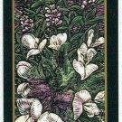 Doral 2006 Card Americas Backyard #6 Indian Breadroot