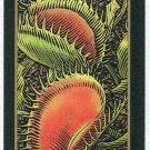 Doral 2006 Card Americas Backyard #12 Venus Flytrap