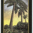 Doral 2006 Card Americas Backyard #16 Royal Palm