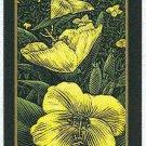 Doral 2006 Card Americas Backyard #20 Evening Primrose