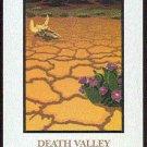 Doral 2005 Card Treasures #9 Death Valley National Park