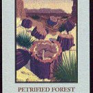 Doral 2005 Card Limited Edition Petrified Forest National Park