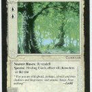 Middle Earth Old Forest Wizards Limited Game Card