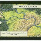 Middle Earth Wold & Foothills Wizards Limited Game Card