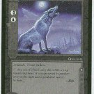 Middle Earth Wolves Wizards Limited Black Border Game Card