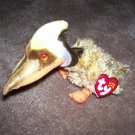 Glider The Prehistoric Bird TY Beanie Baby Born October 4, 2001