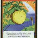 Neopets CCG Base Set #218 Pinanna Game Card
