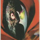 Spawn Painted #P1 Wide Vision Trading Card Spawn