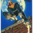Spider-Man Fleer Ultra #5 Gold Foil Signature Black Cat