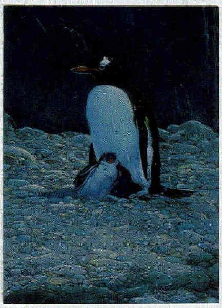 William Stout Lost Worlds #C3 Chromium Card Penguin
