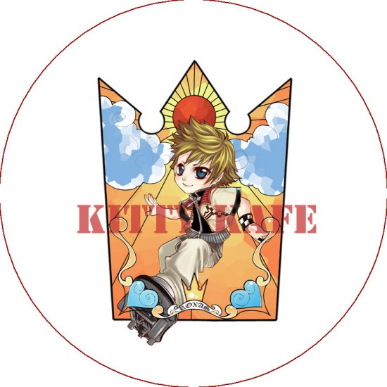 Kingdom Hearts Roxas Version 1
