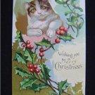 Early Cat ~ Mistletoe Wishing You a Merry Christmas NM