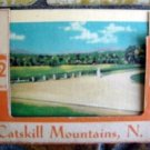 1930s (12) Views of Catskill Mountains N Y New York