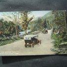 The Mohawk Trail Near Charlemont Mass Postcard