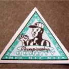 """NFL Championship Quality Sport Logo Triangle Cloth Patch 2 1/2"""" sides"""