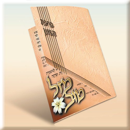 Cutout Birchat Hamazon - 3-Fold Bencher - Personalized for your Simcha - 100 Pack(v202-100)