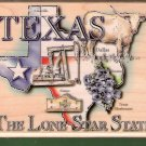 Large State of Texas mounted rubber stamp Stampabilities