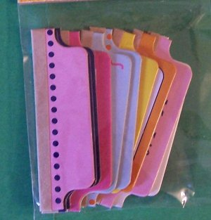 Set of ten chipboard tabs ready to label in pastel colors adhesive backs MIP