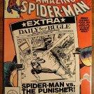 Marvel Comics - Amazing Spider-Man Annual #15 (B) 1981 comic book, spiderman F/VF w/ The Punisher!