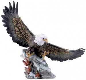EAGLE`S SOFT LANDING IN SNOW