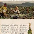 Vintage 1964 Tattinger Brut Champagne 1959 AD