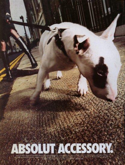 2001 Absolut Vodka Accessory Bull Terrier Dog AD