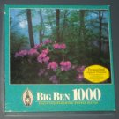 Hardwood Forest NC 1000 Piece Jigsaw Puzzle Big Ben 4962-51 North Carolina SEALED