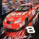 Dale Earnhardt Jr Royal Plush Raschel Throw Blanket #8 Budweiser Monte Carlo Nascar NIP