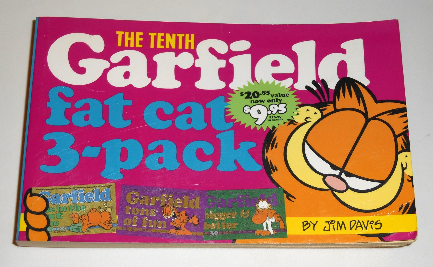 The Tenth 10th Garfield Fat Cat 3 Pack Book 28th 29th 30th Cat Paperback Soft Cover Odie Paws