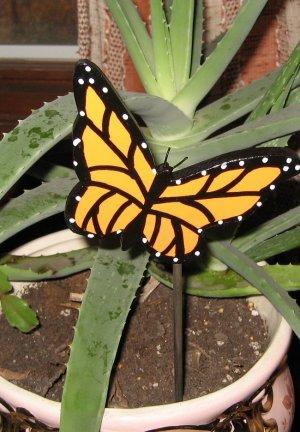 Yellow Butterfly Plant Poke