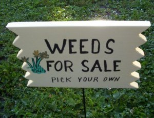 Weeds for Sale garden sign